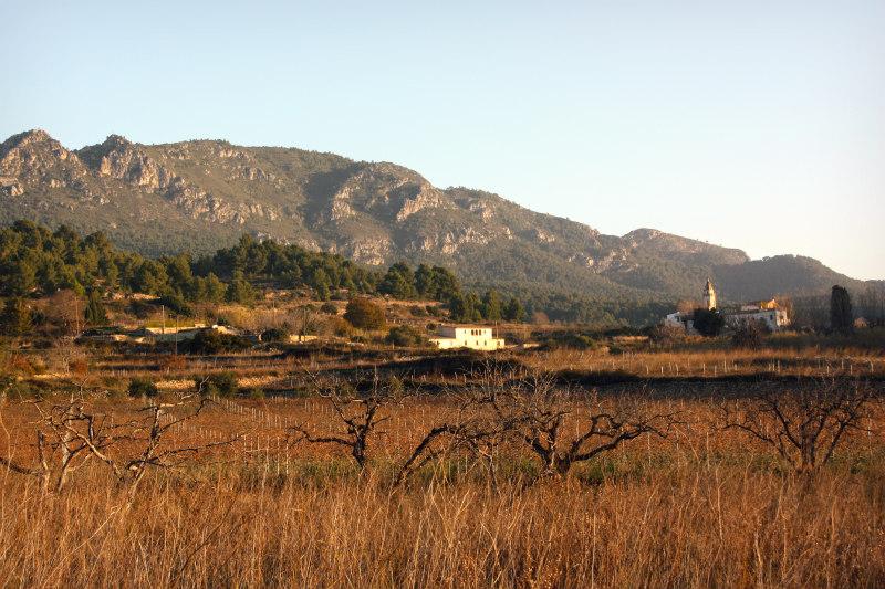 Rodet-Finestres-de-fusta-Finestres-de-fusta-Juncosa-del-Montmell-Penedes-Catalunya-casa-ecològica