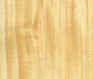 madera de castaño ventana Eficient 78 catalago ventanas Carreté Finestres