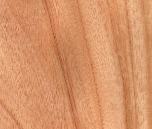 madera de cedro ventana Eficient 78 catalago ventanas Carreté Finestres